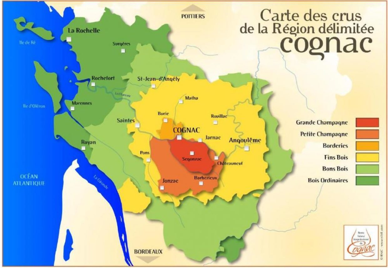 Cognac Fine Champagne : qu'elle est cette catégorie ?