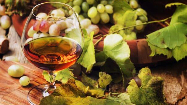Cépages : quels raisins sont utilisés pour faire du cognac ?