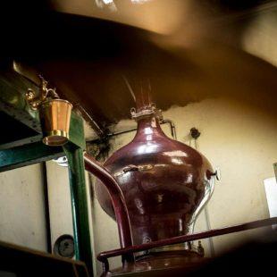 La distillation, quelques explications